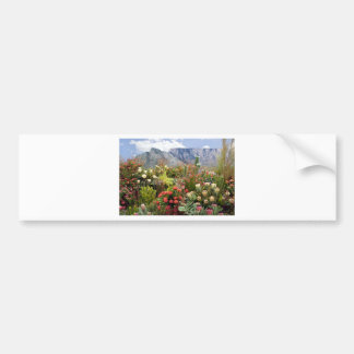 South African floral display of wildflowers Bumper Sticker