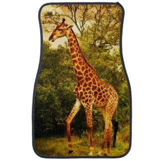 South African giraffes Car Mat