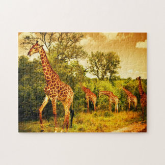 South African giraffes Jigsaw Puzzle