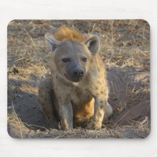South African Hyena Mouse Pad