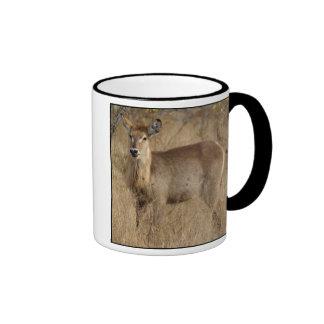 South African Impala Ringer Coffee Mug