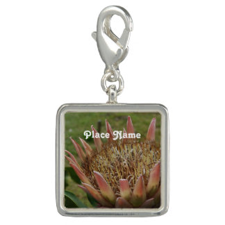 South African King Protea Charms