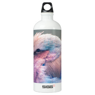 South African Lilac-Breasted Roller Aluminum Water Bottle