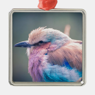 South African Lilac-Breasted Roller Metal Ornament