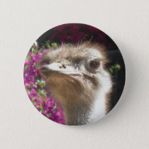 South African Ostrich Face Button