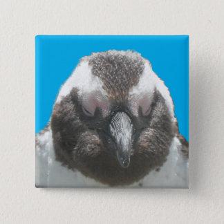 South African Penguin Face Button