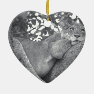South African resting lion Ceramic Ornament