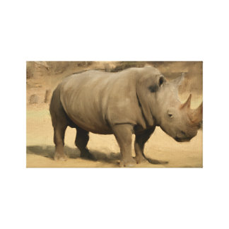 South African Rhino Canvas Print