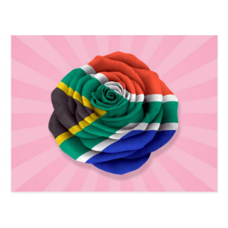 South African Rose Flag on Pink Postcard