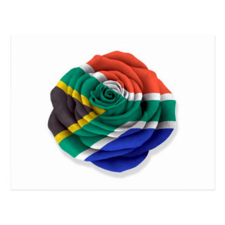 South African Rose Flag on White Postcard