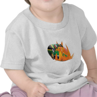 South African rugby fans baby shirts for kids