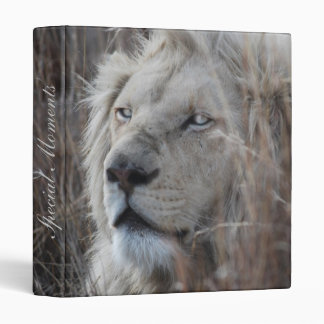 South African White Lion close up 3 Ring Binder