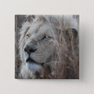 South African White Lion close up Button