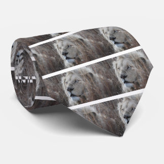 South African White Lion close up Tie