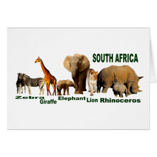 South African Wildlife Card