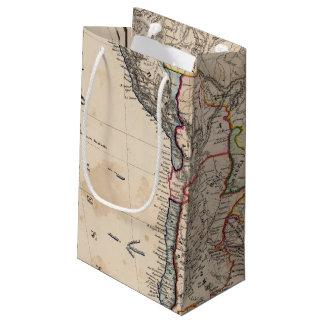 South America 25 Small Gift Bag