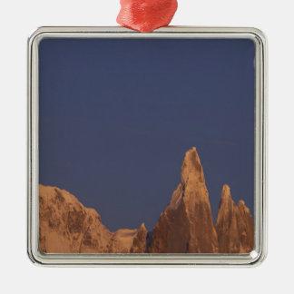 South America, Argentina, Patagonia Parque Metal Ornament