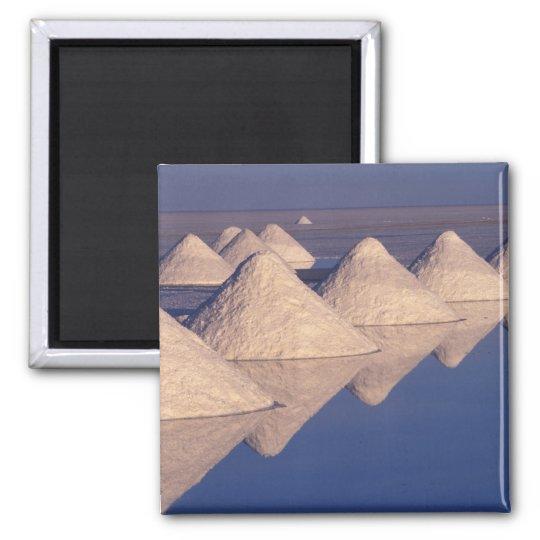 South America, Bolivia. Salar de Uyuni Magnet