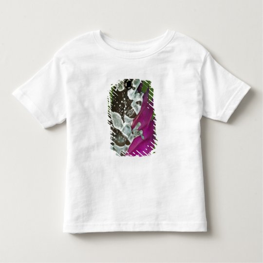 South America, Brazil, Amazon Basin. Close-up of Toddler T-shirt