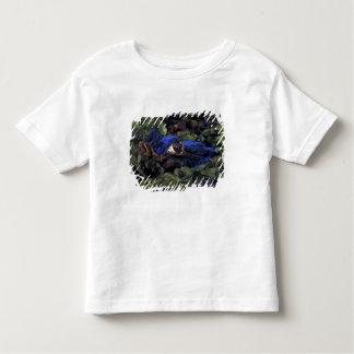 South America, Brazil, Amazon Rainforest, 2 Toddler T-shirt