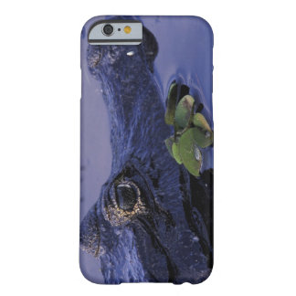 South America, Brazil, Amazon Rainforest, Barely There iPhone 6 Case