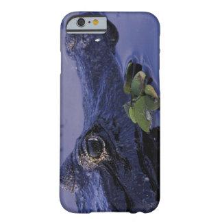 South America, Brazil, Amazon Rainforest, iPhone 6 Case