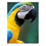 South America, Brazil, Iguacu Natioanl Park, Postcard