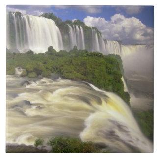 South America, Brazil, Igwacu Falls. Glorious Tile