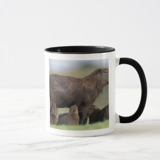 South America, Brazil, Pantanal Capybara Mug