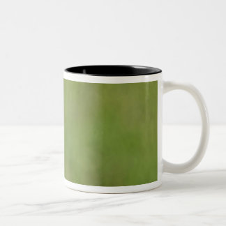 South America, Brazil, Pantanal.  The Burrowing Two-Tone Coffee Mug