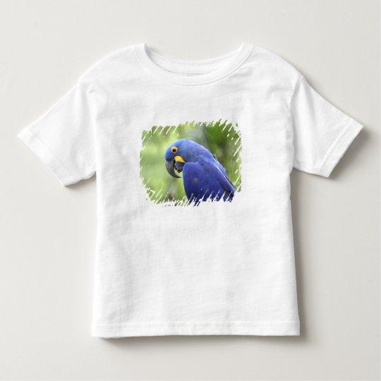 South America, Brazil, Pantanal. The endangered 2 Toddler T-shirt