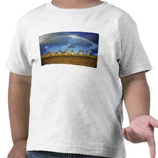South America, Chile, Easter Island. The full Tees