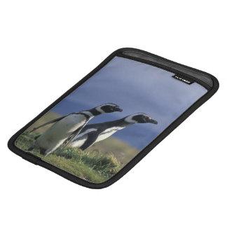 South America, Chile, Patagonia, Magellanes, 2 iPad Mini Sleeve