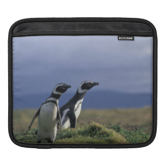 South America, Chile, Patagonia, Magellanes, 2 iPad Sleeve