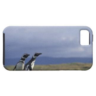 South America, Chile, Patagonia, Magellanes, 2 iPhone SE/5/5s Case