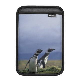 South America, Chile, Patagonia, Magellanes, 2 Sleeve For iPad Mini