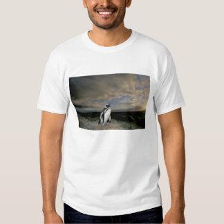 South America, Chile, Patagonia, Magellanes, Tee Shirt