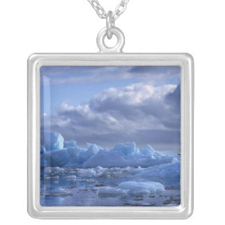 South America, Chile, San Rafael Lagoon NP. Silver Plated Necklace