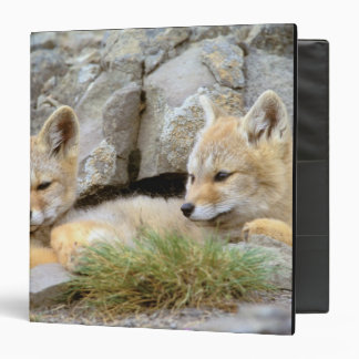 South America, Chile, Torres del Paine Binder