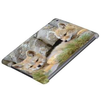 South America, Chile, Torres del Paine Case For iPad Air