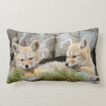 South America, Chile, Torres del Paine Lumbar Pillow