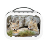 South America, Chile, Torres del Paine Yubo Lunch Boxes