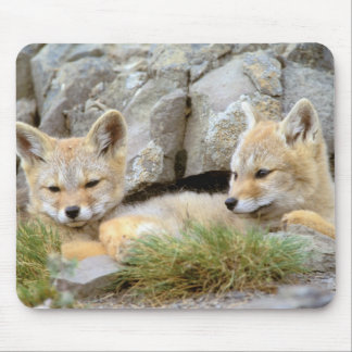 South America, Chile, Torres del Paine Mouse Pad