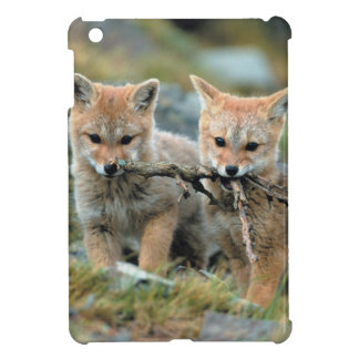South America, Chile, Torres del Paine National Case For The iPad Mini