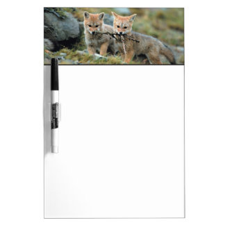 South America, Chile, Torres del Paine National Dry-Erase Board