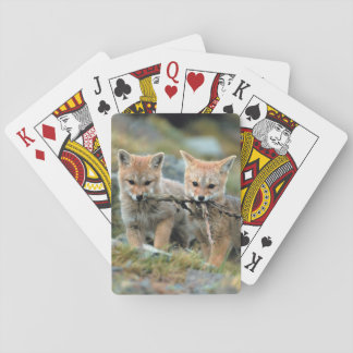 South America, Chile, Torres del Paine National Playing Cards