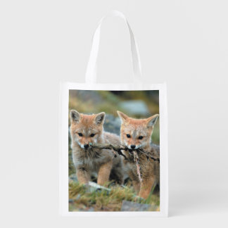 South America, Chile, Torres del Paine National Market Tote