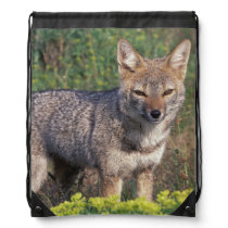 South America, Chile, Torres del Paine NP, Drawstring Backpack