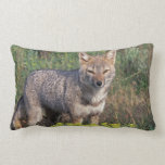 South America, Chile, Torres del Paine NP, Lumbar Pillow