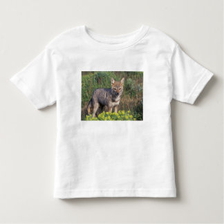 South America, Chile, Torres del Paine NP, Toddler T-shirt